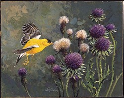 Finch & Thistle