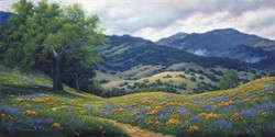 Spring in Carmel Valley