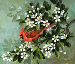Cardinal and Blossoms