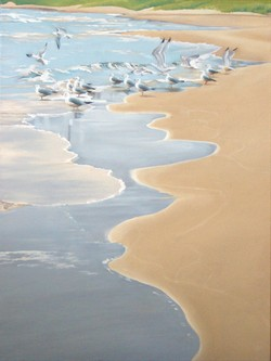 The Gulls of Whitefish Bay