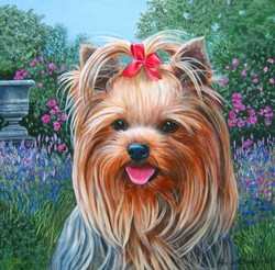 Yorkie with urn in garden