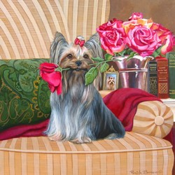 Yorkie with Rose 2