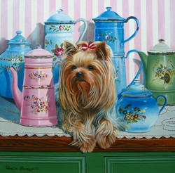 Yorkie with Jugs