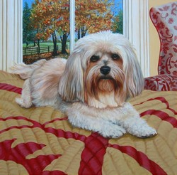 Lhasa on Gold Quilt